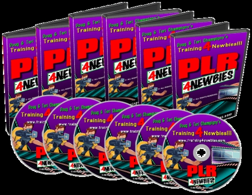 Product picture PLR For Newbiew Video Series